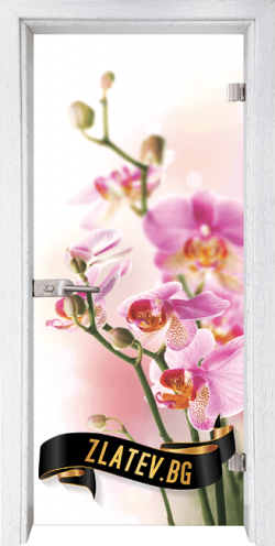 Стъклена интериорна врата Print G 13 2 Y